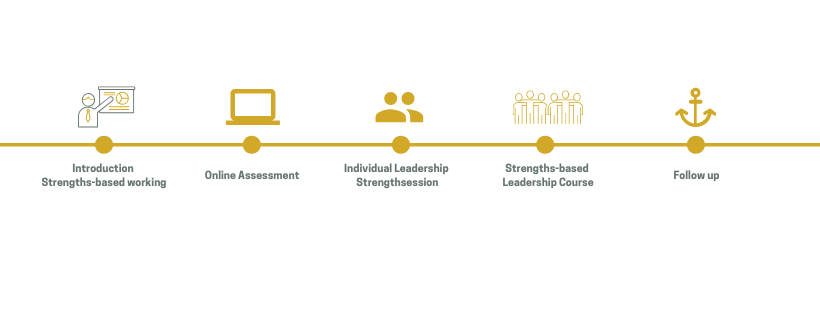 Strengthsfinder Leadership trajectory